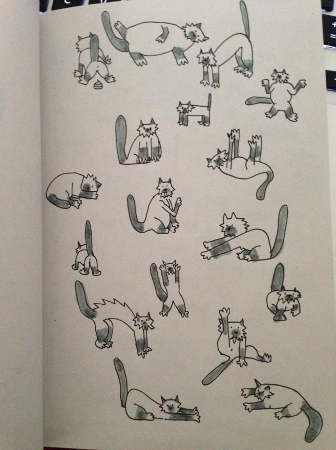 Bibou (mon chat) me manqueeeee ! Salo qui ne supporte pas la vie parisienne